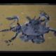 dreckstueckchen-schildkroete-etwa-220-mio-jahre-alt