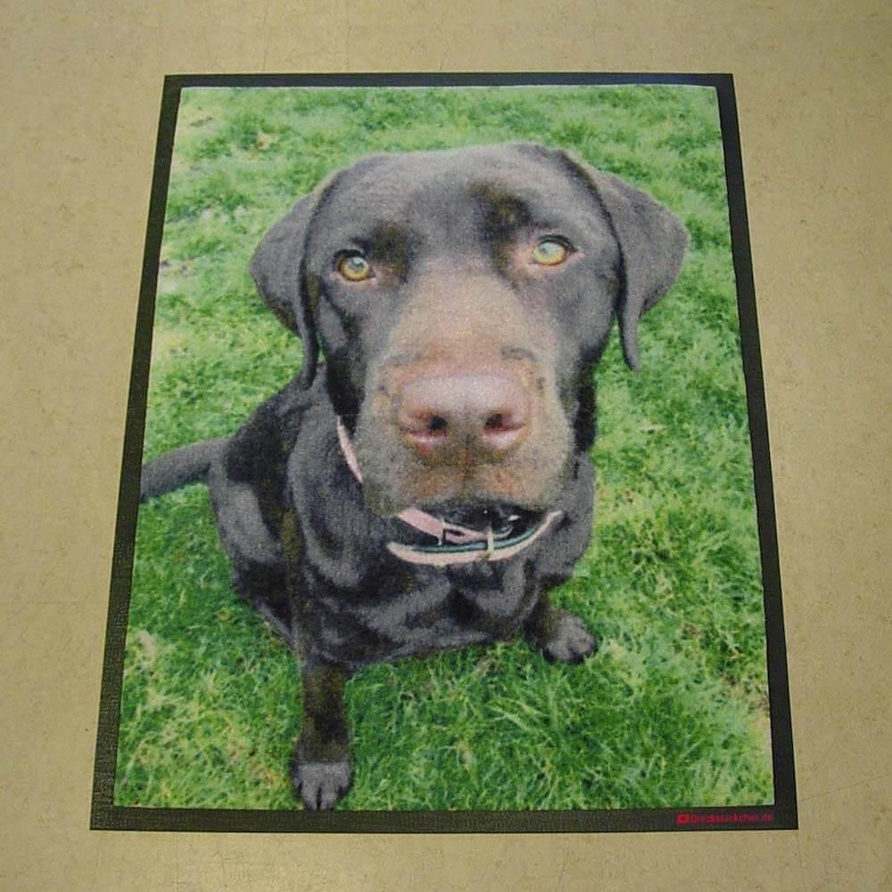Foto Fußmatte Hund